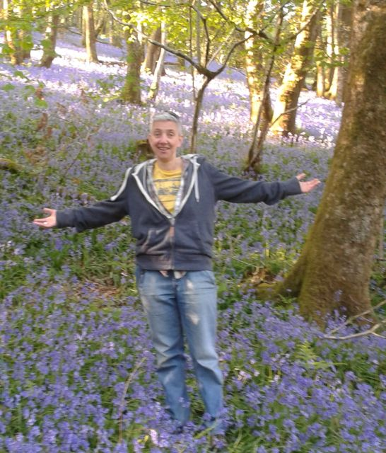 In bluebell woods near my home in Gwynedd